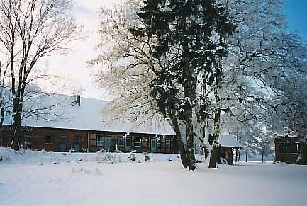 [Winter]